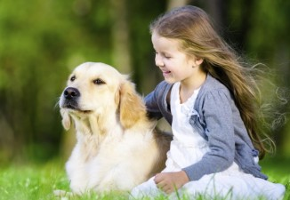 Dos and Don'ts When Greeting Animals